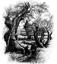 Bild aus: Palästina in Bild und Wort, nebst der Sinaihalbinsel und dem Lande Gosen, nach dem Englischen herausgegeben von Georg Ebers und Hermann Guthe, Bd. 1, Stuttgart / Leipzig 1883, 93.