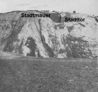 Aus: E. Macdonald / J.L. Starkey / L. Harding, Beth-Pelet II. Prehistoric Fara. Beth-Pelet Cemetery (BSAE 52), London 1932, Taf. LXXVI, 2 (mit Beschriftung durch Verf.)